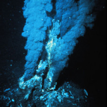 An Atlantic Hydrothermal Vent