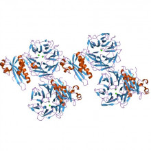 Colicin N toxin structure