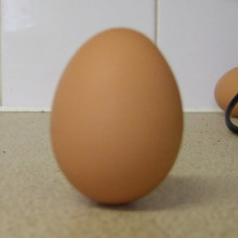 The egg stands on end