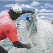 Fisherman, Saloum estuary, Senegal