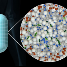 A new technology under development by an academic–industry partnership protects oral bacterial vaccines from destruction by the digestive system.