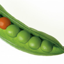 We're not like peas in a pod
