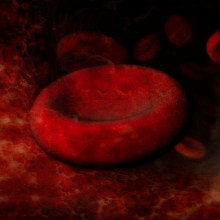 An artists impression of red blood cells